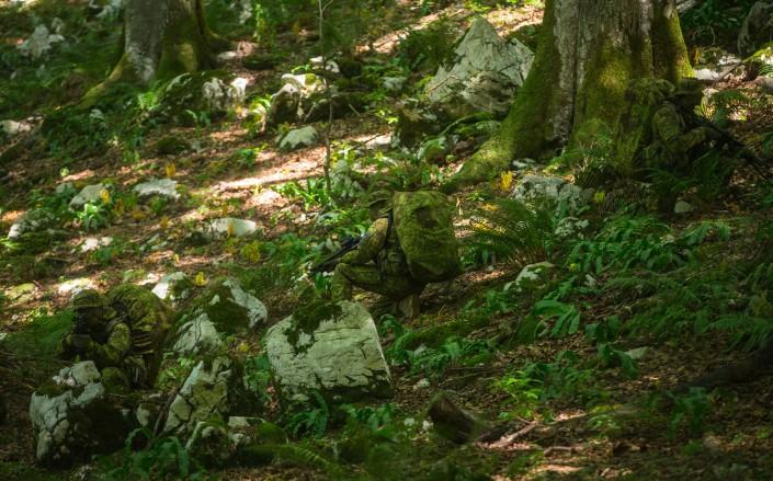GreenZone, Slovenia (UF PRO)